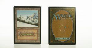 Taiga Beta mtg proxy magic the gathering tournament proxies GP FNM available