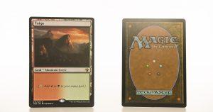 Taiga Vintage Masters hologram mtg proxy magic the gathering tournament proxies GP FNM available