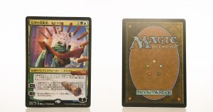 Tamiyo, Collector of Tales - Japanese WAR mtg proxy magic the gathering tournament proxies GP FNM available