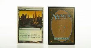 Brushland 9E (Core Set Ninth Edition) 9th mtg proxy magic the gathering tournament proxies GP FNM available
