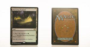 Nurturing Peatland MH1 mtg proxy magic the gathering tournament proxies GP FNM available