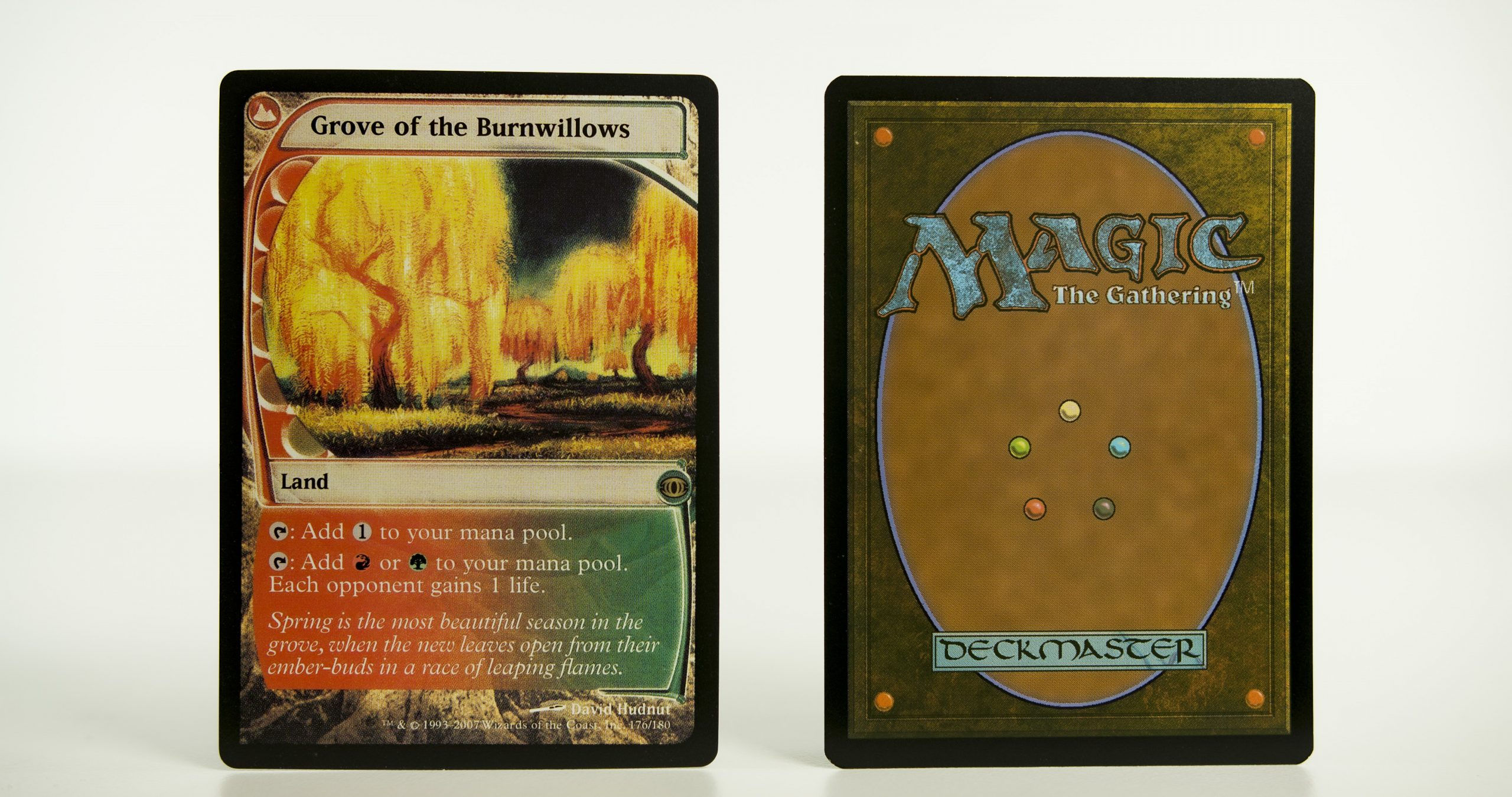 Grove of the Burn willows Future Sight mtg proxy magic the gathering tournament proxies GP FNM available