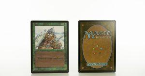 ice storm beta mtg proxy magic the gathering tournament proxies GP FNM available