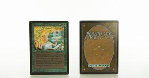 verduran enchantress  B Limited Edition Beta (LEB) mtg proxy magic the gathering tournament proxies GP FNM available