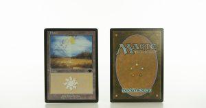 Plains PGRU Guru mtg proxy magic the gathering tournament proxies GP FNM available