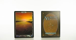 Plains UNH Unhigned mtg proxy magic the gathering tournament proxies GP FNM available