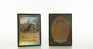 Wasteland magic players rewards 2001 mtg proxy magic the gathering tournament proxies GP FNM available