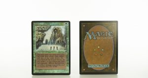 Sylvan Library Lengends mtg proxy magic the gathering tournament proxies GP FNM available