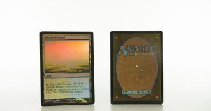 Flooded Strand Judge Gift Cards 2009 mtg proxy magic the gathering tournament proxies GP FNM available