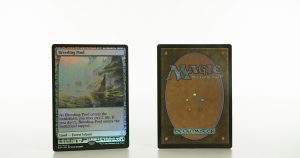 Breeding Pool Zendikar Expeditions mtg proxy magic the gathering tournament proxies GP FNM available