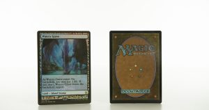 Watery Grave Zendikar Expeditions mtg proxy magic the gathering tournament proxies GP FNM available