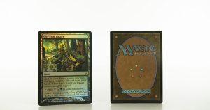 Gilt-Leaf Palace Lorwyn mtg proxy magic the gathering tournament proxies GP FNM available
