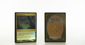 Reflecting Pool Conspiracy mtg proxy magic the gathering tournament proxies GP FNM available