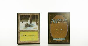 Snow-Covered forest Ice Age mtg proxy magic the gathering tournament proxies GP FNM available