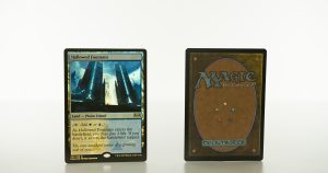 Hallowed Fountain Ravnica Allegiance (RNA) foil mtg proxy magic the gathering tournament proxies GP FNM available